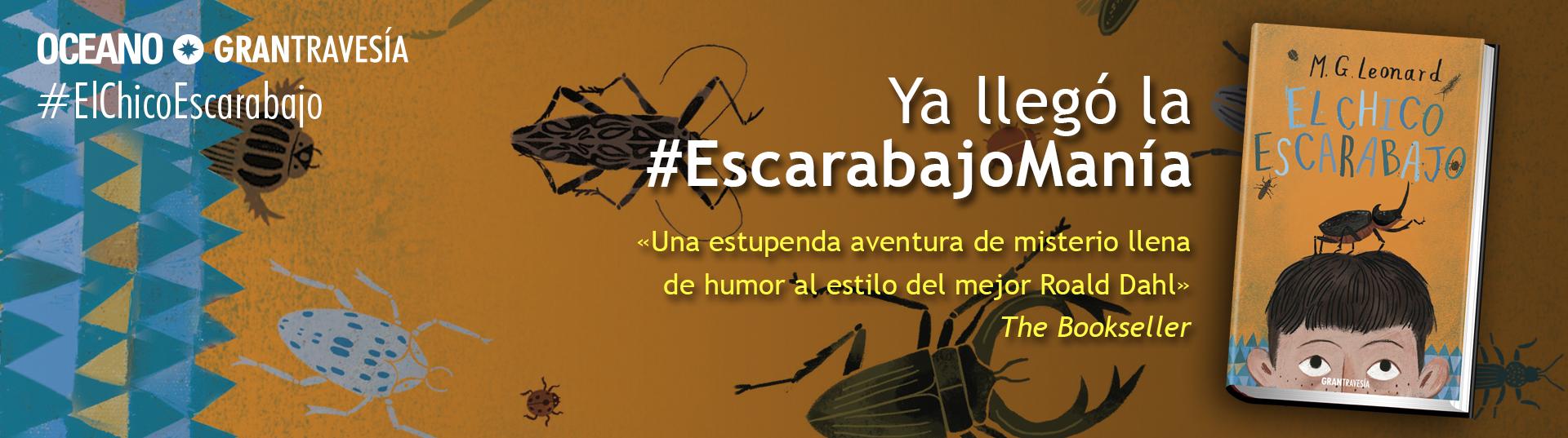 El Chico Escarabajo